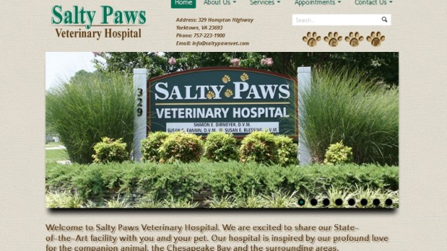 Animal hospital, dogs, cats, medical, shelter
