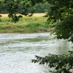 The Shenandoah River peeking through the trees 2